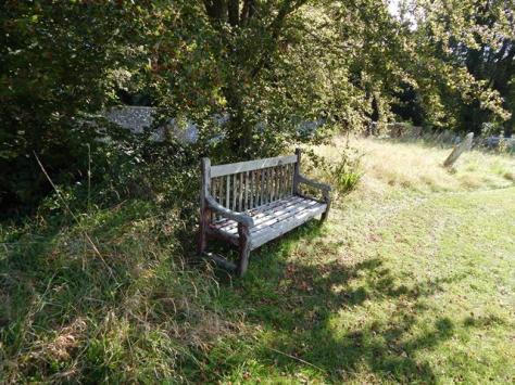 bench  by nikon